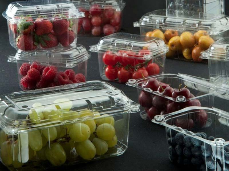 Food Packaging - punnets